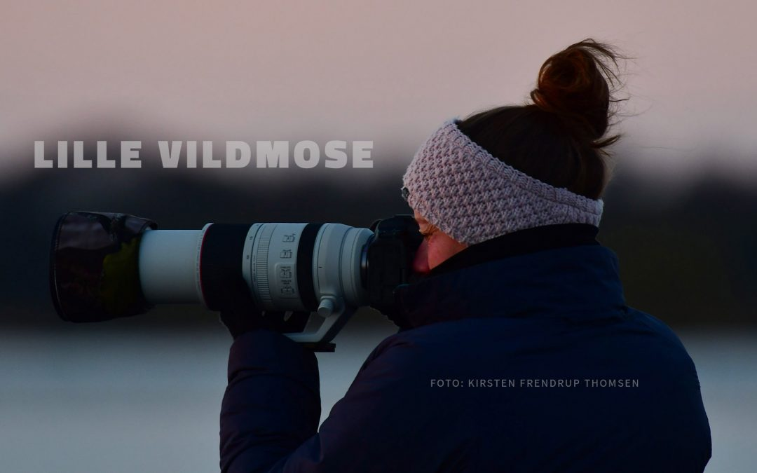 Youtube video from Lille Vildmose