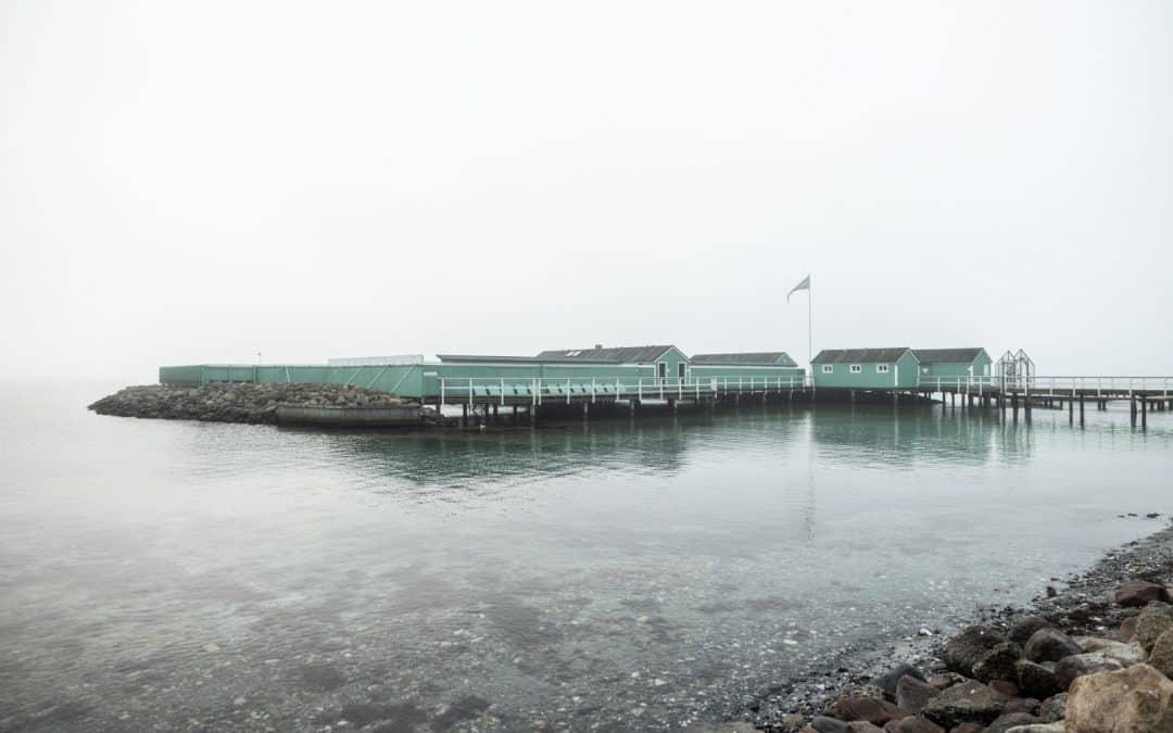 A hazy morning at Charlottenlund Søbad